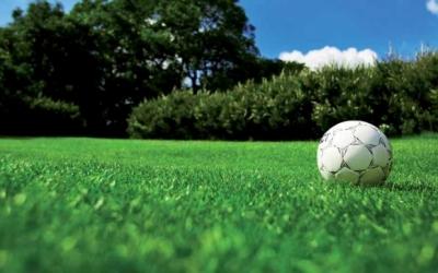 DLF Turfline - Спорт Хот